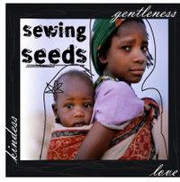 Sewingseeds1_1